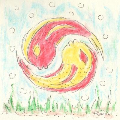 poissons bulles yin yang
