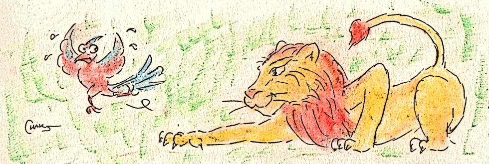 lion tapi et petit oiseau